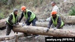 Рабочие чистят пострадавшую часть в Иле-Алатауском национальном парке после пожара. Алматы, 7 сентября 2012 года. Иллюстративное фото.