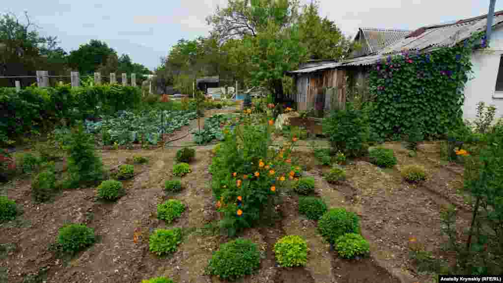 Ухоженный сельский огород