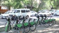 Являются ли велодорожки причинами пробок?