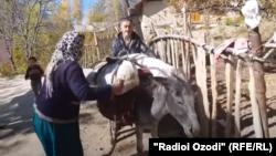 Муҳиддин Ҳасанов, сокини деҳаи Артучи Панҷакент