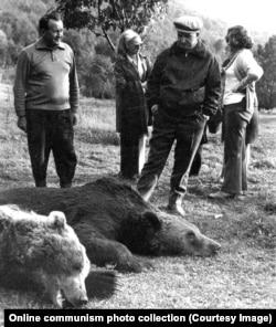Чаушеску осматривает туши убитых медведей в окрестностях Бистрицы, города на севере Румынии. 1972 год.