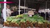 Таджикские травы: еда и лекарство