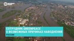 Пожары и вырубка. Почему уничтожение лесов может сделать наводнение катастрофическим