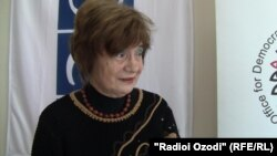 Парашива Бадеску, руководитель наблюдательной миссии ОБСЕ в Таджикистане. Душанбе, 1 ноября 2013 года.