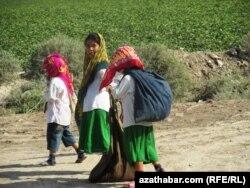Türkmenistanyň pagta meýdanlaryndaky çagalar.