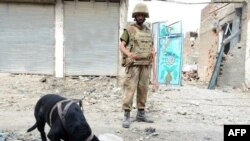 Pakistani soldiers using a sniffer dog to search an area during a military operation against Taliban militants in the town of Miran Shah in North Waziristan in July 2014.