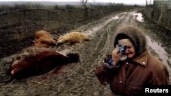 Селение Самашки, российские войска убили скот этой женщины. 1994 год