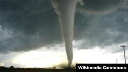Торнадо в США, січень 2013 року
