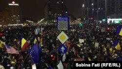 Протесты в Румынии, 12 февраля 2017 год