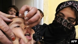An Afghan health worker drops polio vaccine into the mouth of a child during a vaccination campaign in Kabul in 2009. It's still unclear whether a young woman shot dead in eastern Afghanistan recently was working on such a campaign and, if so, if that is why she was killed.