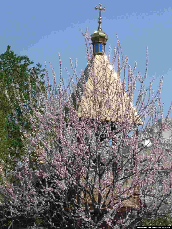 Весняний квіт довкола храму