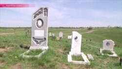 Кладбища домашних животных окружают Красноярск