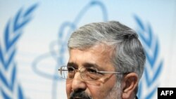 علیاصغر سلطانیه، نماینده جمهوری اسلامی در آژانس بین المللی انرژی اتمی