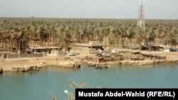 مشهد لبساتين قضاء الهندية بمحافظة كربلاء