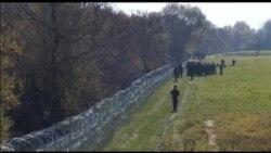 Sllovenia ngre gardh në kufi