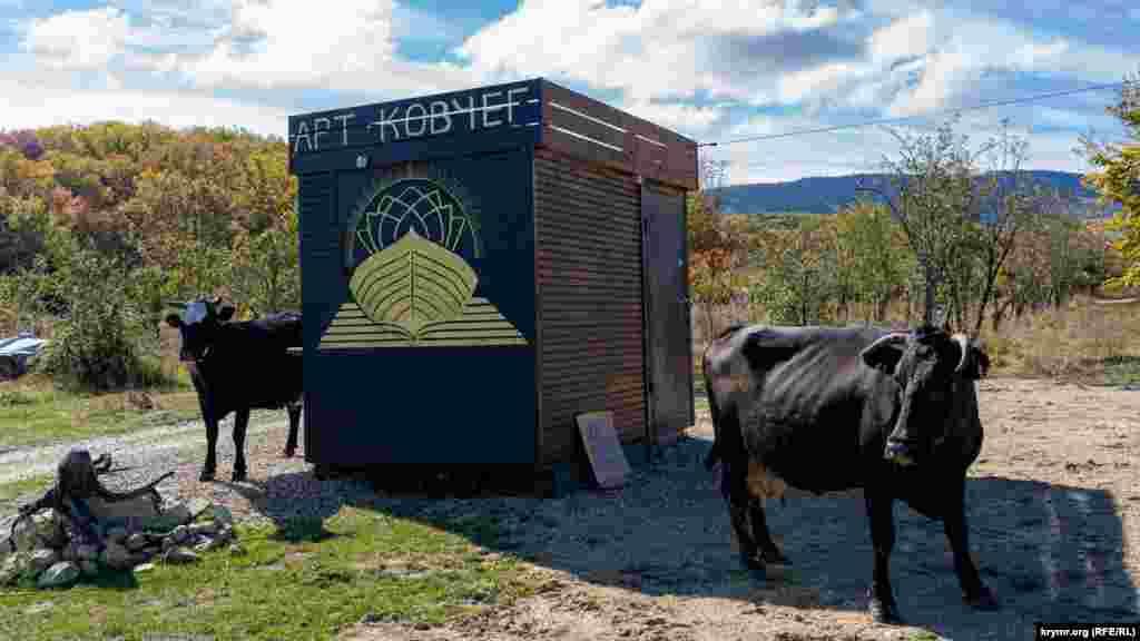 Сільські корови біля входу до «Арт-ковчега»