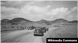 Пассажиры наблюдают за бизонами из припаркованных у обочины автомобилей. США, 1938