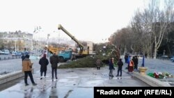 Люди рядом с поваленной ветром елью в центре Худжанда. 27 декабря 2017 года.