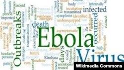 Продолжение политики: борьба с Эболой