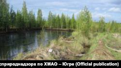 Шламовый амбар в районе куста № 6 Ем-Еговского лицензионного участка, 2012 год. Выведен из эксплуатации в 1988 году.