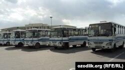 Байрам ўтиб бўлгунча Тошкентга қатнайдиган автобуслар қантарилиб туради.