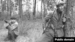 Радянські партизани в Білорусі, 1943 рік