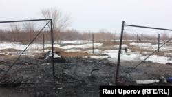 Сгоревшие останки домашних животных. Поселок Круглоозерное, Западно-Казахстанская область. 29 мая 2019 года