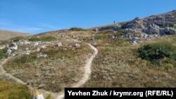 Терновская балка в Черноморском районе