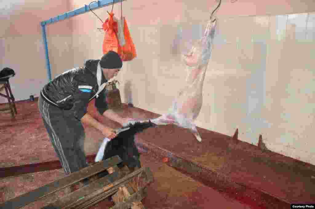 На забой одной овцы у этих джигитов уходит около одного часа. В услуги входят и полная обработка внутренностей и опаливание овечьей головы.