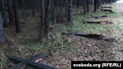 The destruction of crosses at a monument to the victims of Stalin-era repression in Kurapaty, Belarus
