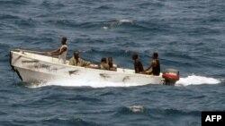 دزدان دریایی سومالی در سال ۲۰۱۱ میلادی عامل اصلی ربودن ۲۸ فروند کشتی و ۲۳۷ حادثه دریایی بودند.
