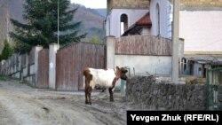 Köy yaşayışı