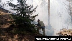 Հրդեհ՝ Բորժոմիի անտառներում
