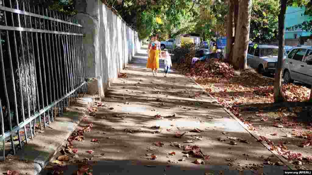 Величезні купи жовтого листя збираються біля дороги