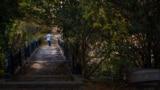 Salğırnıñ küz yalısı, 2017 senesi oktâbrniñ 17-si