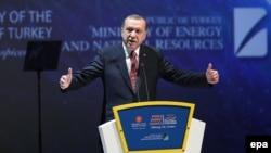 Nije me briga ako me nazivaju diktatorom: Redžep Tajip Erdogan