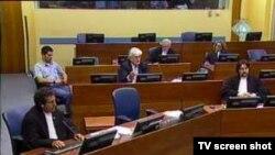 Sa suđenja Karadžiću
