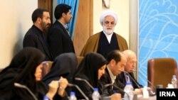 غلامحسین محسنی اژهای گفته است که «موارد مطرح شده در افایتیاف کشور را بیشتر گرفتار خواهد کرد».