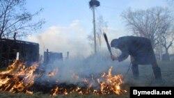 Жыхарка вёскі Наспа Буда-Кашалёўскага раёну тушыць траву каля сваёй хаты, архіўнае фота