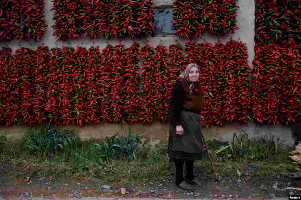 A woman poses for a picture as bunches of paprika hang on the walls of her house to dry in the village of Donja Lakosnica, Serbia. (Reuters/Marko Djurica)