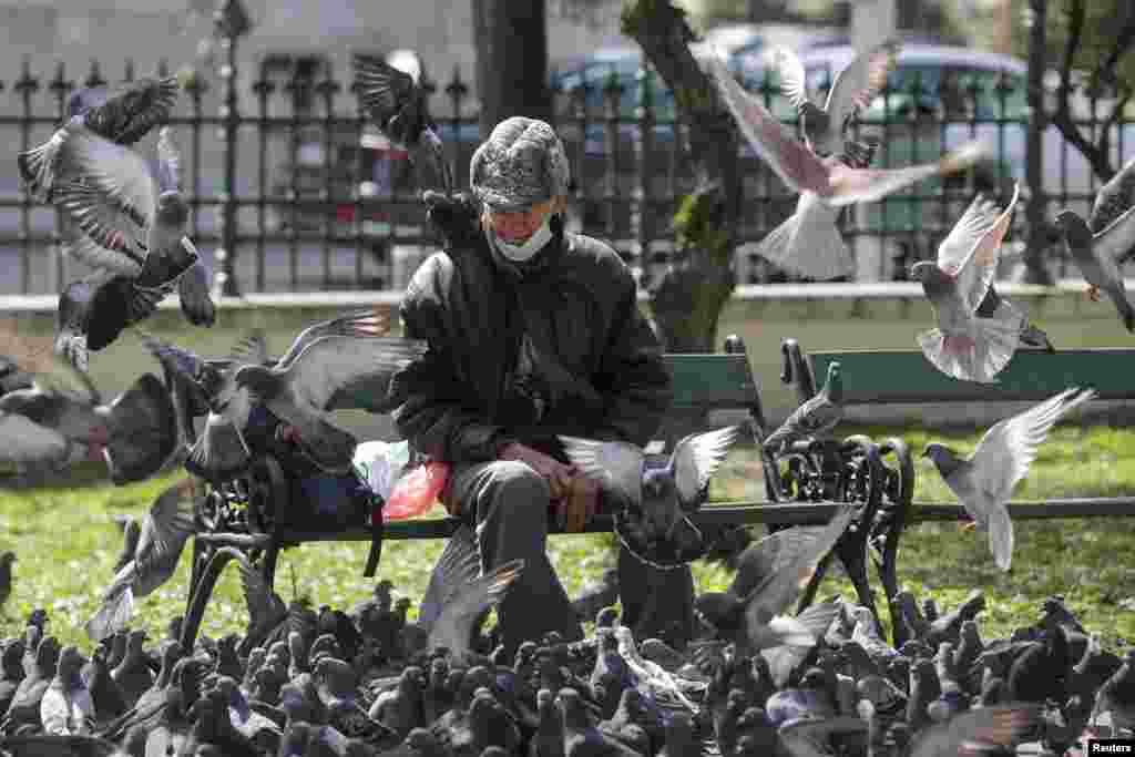 A man rests on a bench after feeding pigeons in Bucharest. (Reuters/Octav Ganea)