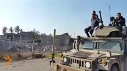 Iraqi Forces Enter Duluiya After Recapture From Islamic State Militants