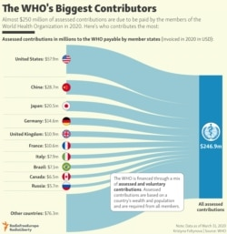 INFOGRAPHIC: The WHO's Biggest Contributors