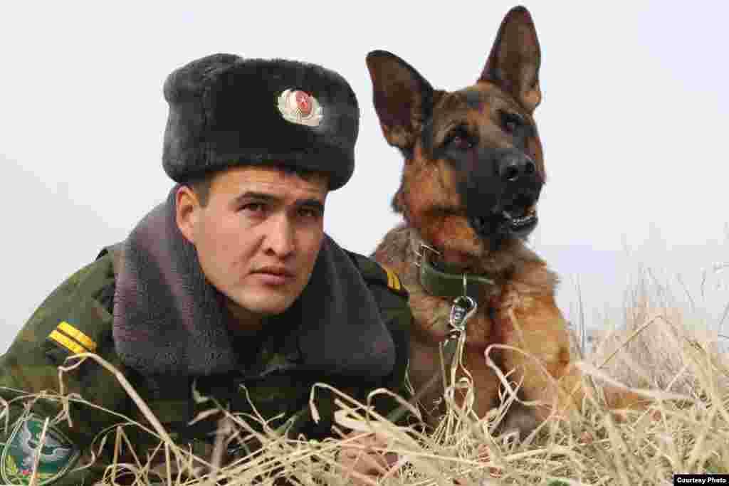 Пограничник на страже безопасности. На фотографии сержант Маратбек Маматов с собакой. Автор Алина Сыдыкова.