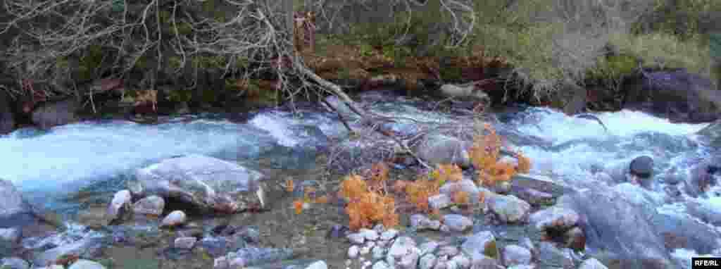 Осень в горах Иссык-Куля #9