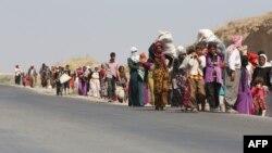 Տեղահանված եզդիները Իրաքի և Սիրիայի սահմանի Ֆիշխաբուր անցակետի մոտ, 13-ը օգոստոսի, 2014թ․