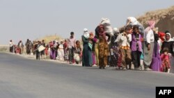 شهروندان ایزدی عراق، پس از حملات نیروهای حکومت اسلامی آواره شده و به کوهها پناه بردند