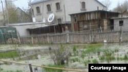 Ауласын су басқан Павлодар тұрғынының үйі