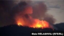 Пожар в лесах Ахалциха. 9 августа 2010 г.