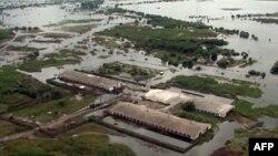 Затопленная ферма в Амурской области